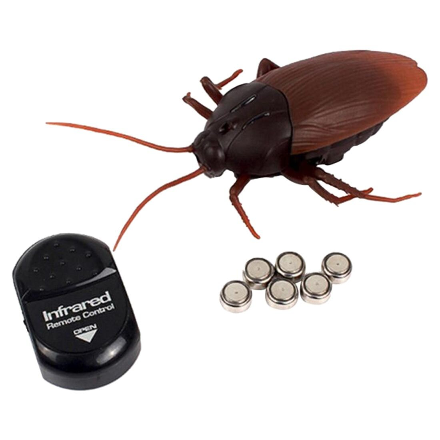 무선조종 바퀴벌레